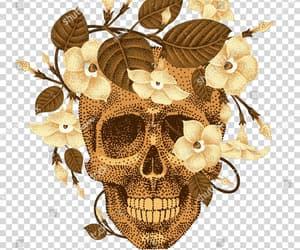 artwork, flower, and rose image