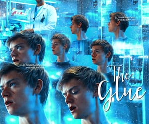 newt, the glue, and thomas brodie sangster image