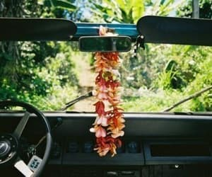 flowers, car, and hawaii image