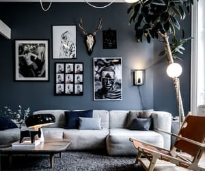 apartment, black&white, and blue image