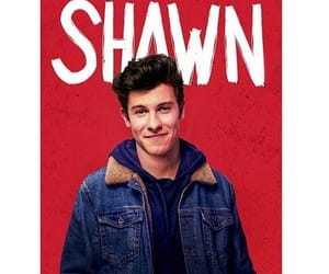 shawn, singer, and shawnmendes image