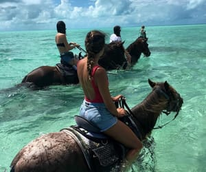 horse, summer, and beach image