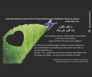 allah, Ramadan, and heart image