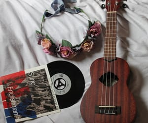 flower, flowers, and record image
