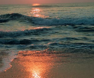 beach, sunset, and landscapes image