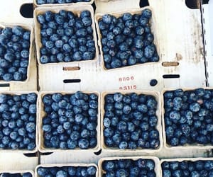 fruit, healthy, and blueberry image