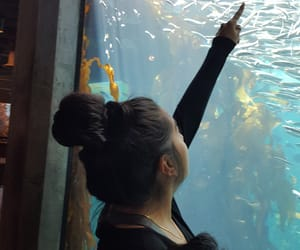 aquarium, relaxed, and love image