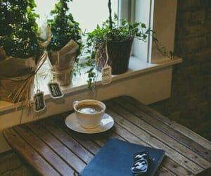 book, sunglasses, and window image
