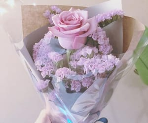 flower, pink, and pony image