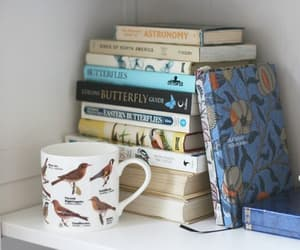 books and cute image