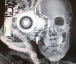 bones, scary, and picture image