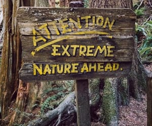 adventure, explore, and sign image