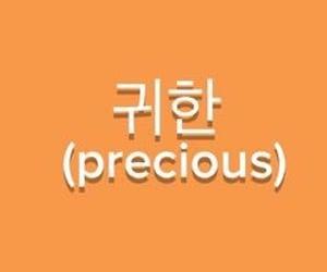 text, aesthetic, and orange image