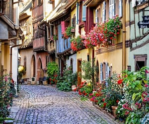alley, france, and alsace image