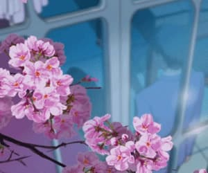 cherry blossom, gif, and anime scenery image