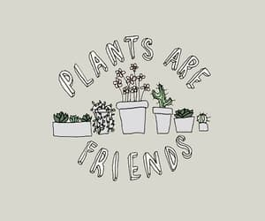 plants, are, and tumblr image