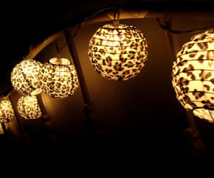light, animal print, and lamp image