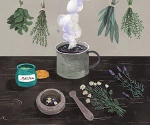 gif, art, and herbs image