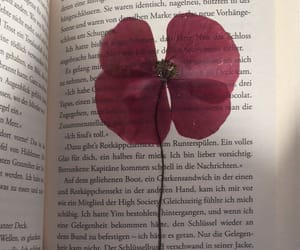 book, text, and flower image