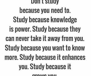 girl, quotes, and study image