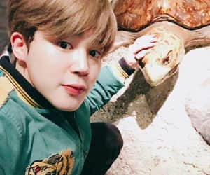 animals, kpop, and army image