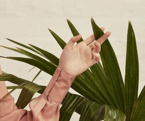 90s, hand, and nature image