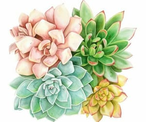 arte, flora, and pintura image