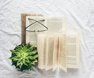 books, plants, and glasses image