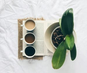 books, plants, and coffee image