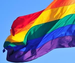 article, gay, and gay pride image