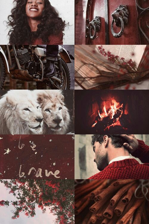 gryffindor, harry potter, and love image