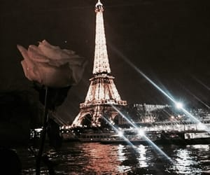paris, rose, and beautiful image