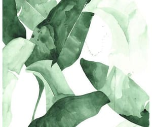 abstract art, green, and watercolor image