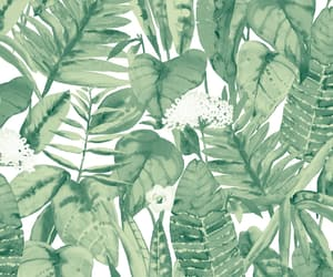 floral design, hawaii, and pattern image