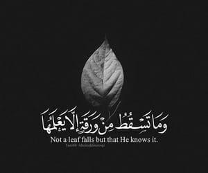 القران الكريم, ﻋﺮﺑﻲ, and امل image