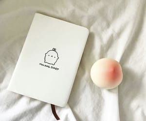 notebook, peach, and white image