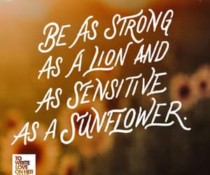 lion, quote, and sensitive image