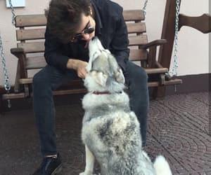 boy, animal, and dog image