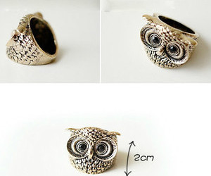 owl, ring, and jewelry image