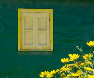 green, yellow, and house image