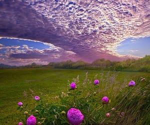belleza, campo, and cielo image