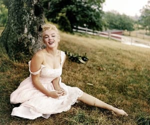 marilyn and Marilyn Monroe image