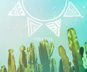 blue, cactus, and circle image