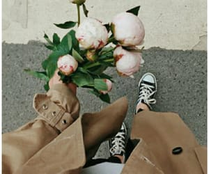 aesthetic, beige, and bouquet image