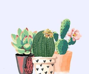 wallpaper, cactus, and flowers image