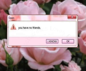 pink, friends, and flowers image