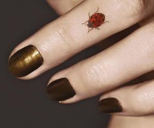 finger, ladybug, and gold image