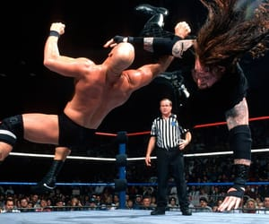 undertaker, steve austin, and wwe image