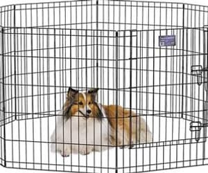 dog kennels, dog crates, and best dog crate image