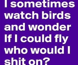 birds, shit, and funny quotes image